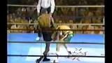 "Julio Cesar Chavez vs Roger ""Black Mamba"" Mayweather"
